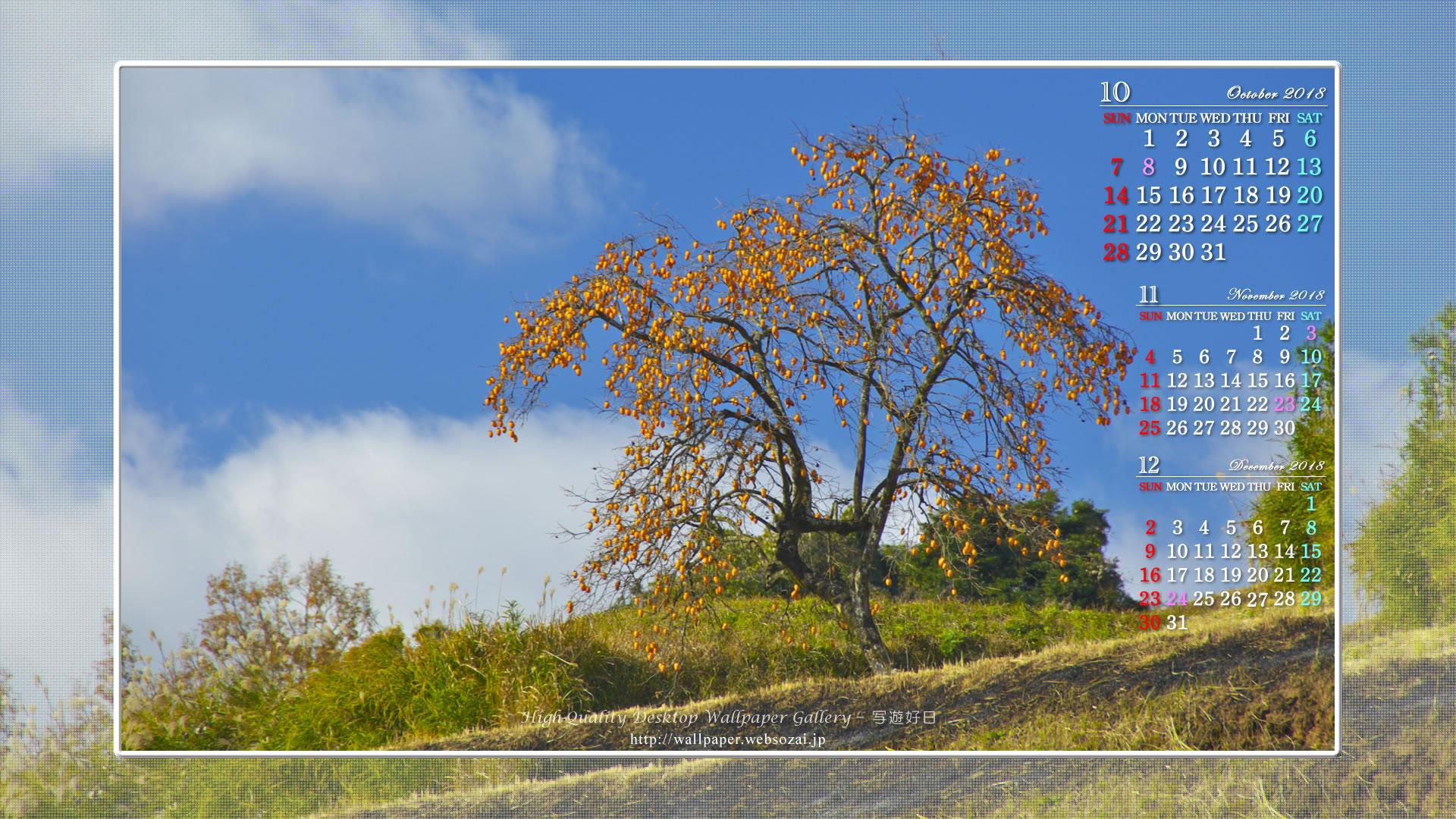 10月カレンダー壁紙 秋の実り 身近な自然 ネイチャーフォト壁紙館